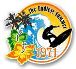 Aged The Endless Summer 1971 Dated Surfing Surfer Design Vinyl Car sticker decal 100x90mm